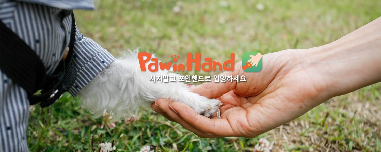 [2017년경진대회 대상]포인핸드